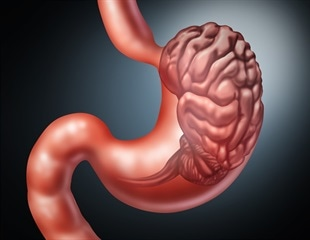 New strategy may strengthen gut-brain communication