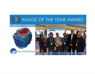 Amsterdam University Medical Center wins MR Solutions' Image of the Year 2019 award