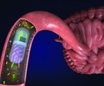 Scientists develop 3D printed pill that samples bacteria found in the gut