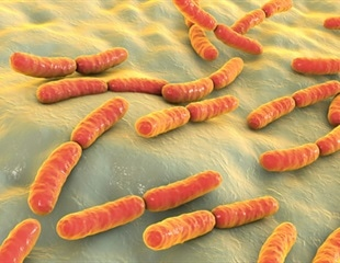 Growth problems in preterm infants associated with altered gut bacteria