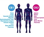 Does Cannabis Interact with the Gut Microbiome?