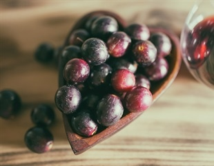 Resveratrol found in grapes could help astronauts on Mars