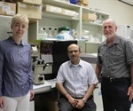 Discovery of protein that may be key to treating tropical diseases