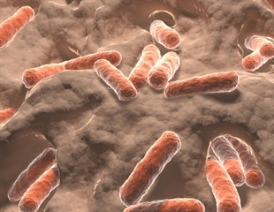 Type 1 diabetes linked to gut microbiome and genetic factors