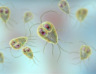 Water treatment could protect 800 million from Giardia infections