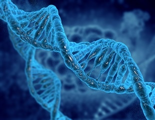 New method prevents the release of synthetic DNA from genetically modified cells