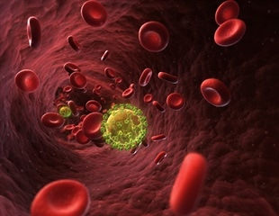 Editing away cancer and HIV in China: win or lose?