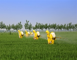Pesticide exposure on the job related to more strokes, heart attacks