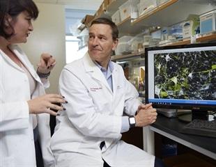 Study suggests prenatal origin for 'young' Parkinson's disease