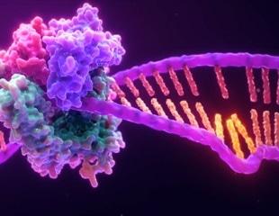 Determining Microsatellite Instability Status Using Multiplex PCR-Based Methods
