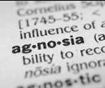What is Agnosia?