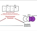 Altered white matter connectivity linked with disruption of conscious access in psychosis