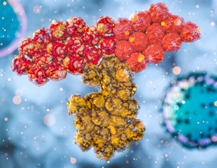 Study suggests neutralizing SARS-CoV-2 antibodies offer protection against reinfection