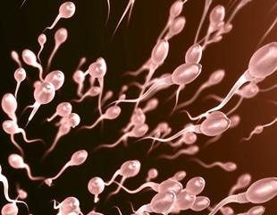 Healthy diet, healthier sperm, greater fertility