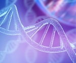 Supercoiled Minicircle DNA Analysis: A Quality Assessment Based on Chromatographic Analysis