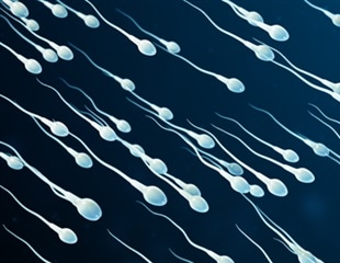 Sperm microbiome revealed with RNA sequencing