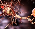 Discovery of molecular mechanism that seems to play an important role in Alzheimer's disease