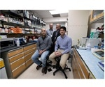 UVA researchers find way to enhance cancer outcomes by examining patients' genetic data