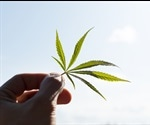 Cannabis Use and Acute Myocardial Infarctions in Young People
