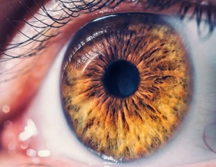 New method to treat blindness using retinal cell production