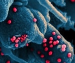 Scientists predict how the novel coronavirus spreads in a typical household