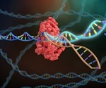 CRISPR technology mobilized for rapid COVID-19 diagnosis