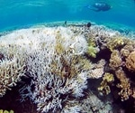 Scientists produce corals with increased heat tolerance to reduce reef bleaching