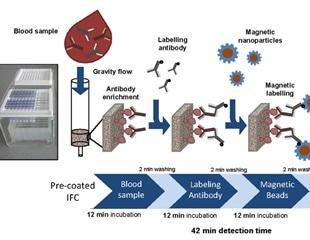 A SARS-CoV-2 antibody magnetic immuno-detection test