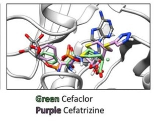 Small molecule drugs binding Mac1 domain of SARS-CoV-2