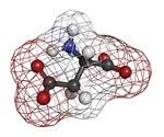 What is Aspartic Acid?