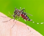 China reports Dengue fever after bubonic plague threat