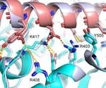 Picomolar inhibitors to SARS-CoV-2 proteins