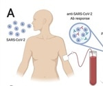 COVID immunity related to how bad you get it