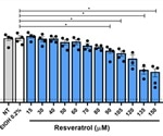 Resveratrol and pterostilbene inhibit SARS-CoV-2 infection in vitro