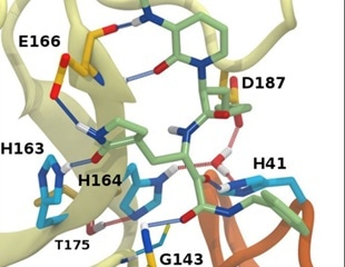 New insights into structural stability of SARS-CoV-2 main protease
