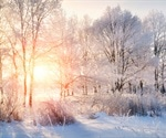 Evaporation is critical for coronavirus transmission in colder months