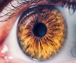 The Use of Nanosensors to Restore Retinal Vision