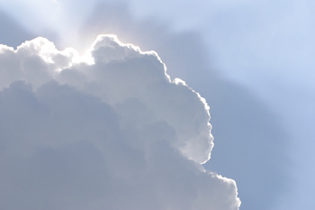 Micro-organisms in clouds could play a crucial role in the spread of disease and in the formation of rain drops, scientists have claimed.