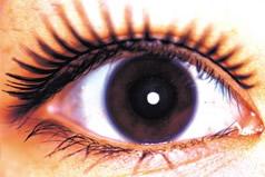 Uma equipe de Brown University encontrou que uma proteína chamou jogos do melanopsin um papel chave nos funcionamentos internos de pilhas misteriosas, araneiformes no olho chamado pilhas retinas intrìnseca fotossensíveis do gânglio, ou de ipRGCs.