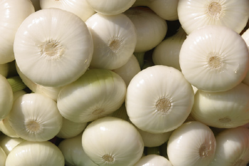 Besides adding flavor to food, onions also may be good for your bones. Researchers at the University of Bern in Switzerland have identified a compound in the popular vegetable that appears to decrease bone loss in laboratory studies using rat bone cells.