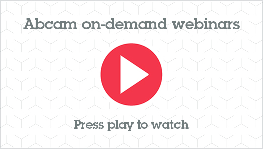 Introduction to RabMAb® Primary Antibody Technology Webinar